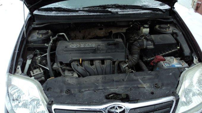 Toyota Corolla.
