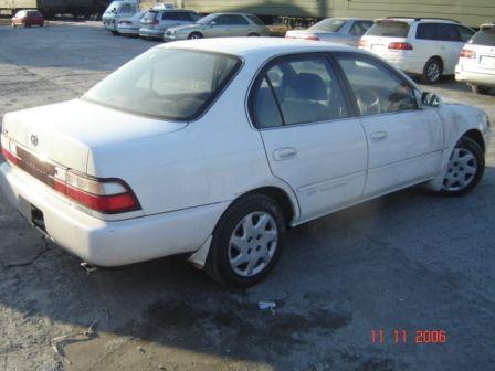 Toyota Corolla 1994 - ����� ���������