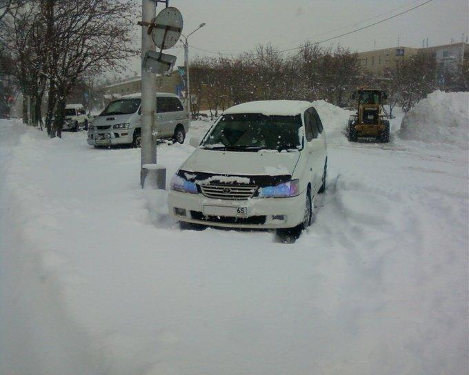 Toyota Gaia.
