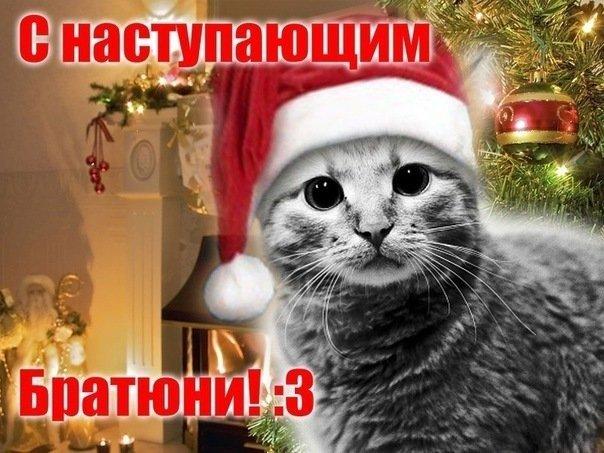 Поздравления брату новый год