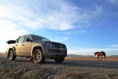 Volkswagen Amarok 2013 отзыв владельца | Дата публикации: 16.11.2013