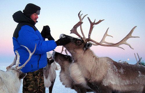 Мы увидели зимники такими.  Зимник Каргасок - Стрежевой (Томская область) .
