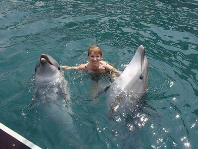 Анапа. Дельфины!!!