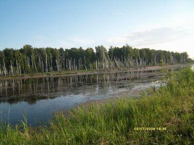 Средняя полоса России - болотистая равнина
