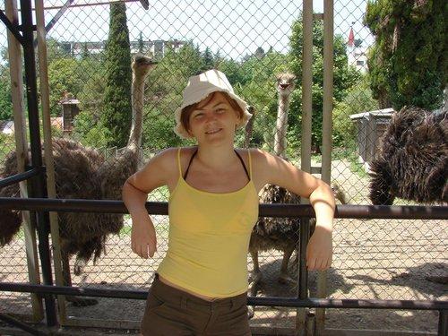 В небольшом вольере топтались страусы.