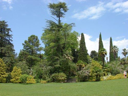В общем, большая часть парка ухоженная и красивая.
