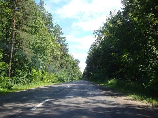 Дорога в Ульяновской области.