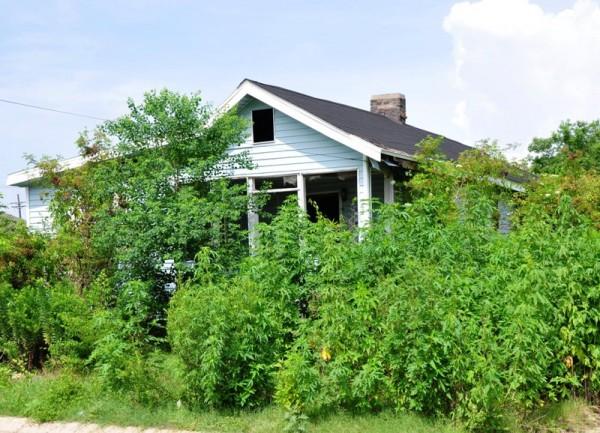 В Новом Орлеане по-прежнему тысячи заброшенных домов, так и не восстановленных после разрушительного урагана Катрина, который в августе 2005 года наполовину уничтожил этот жизнелюбивый город