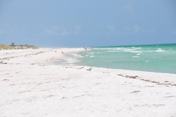 При желании на пляжах Флориды легко можно отыскать для себя уединенный уголок