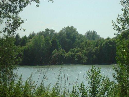 Река Катунь!