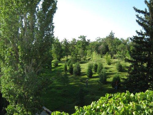 Красивые газоны.
