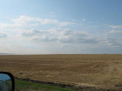 Нескончаемые пшеничные поля.