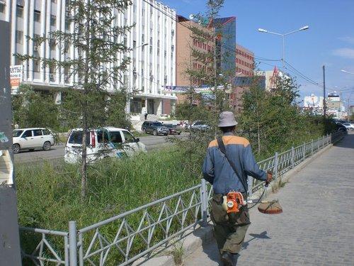 Как приехали, увидели, что трава в Якутске не кошена совсем. И вот тебе на — косарь на проспекте Ленина!