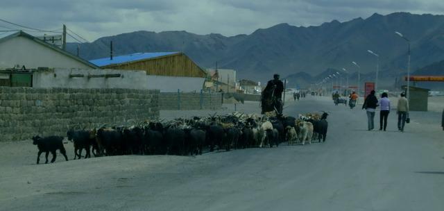 Столица провинции Байян-Улгий – пыльный городок Улгий.