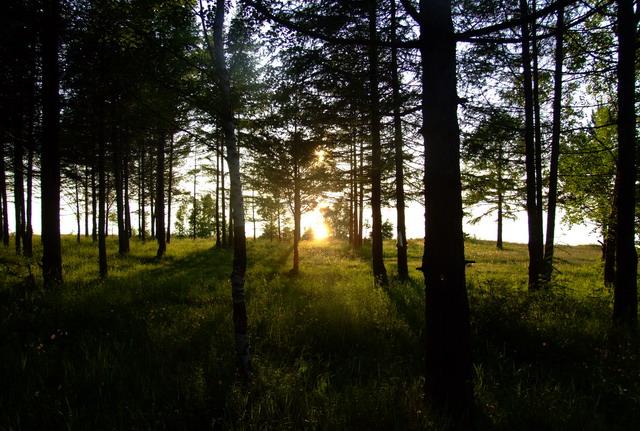 Остановились за 10 км южнее пос. Турка – на берегу Байкала.