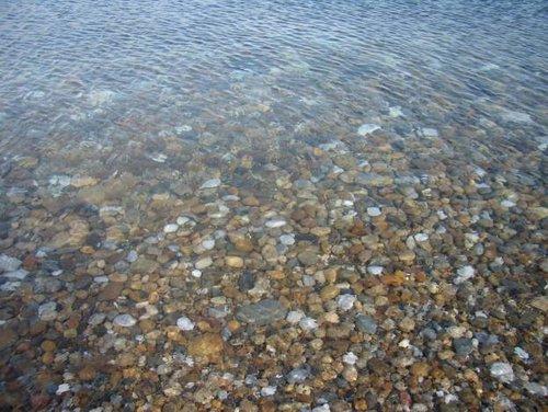 Воду пили, не стесняясь, прямо из озера!