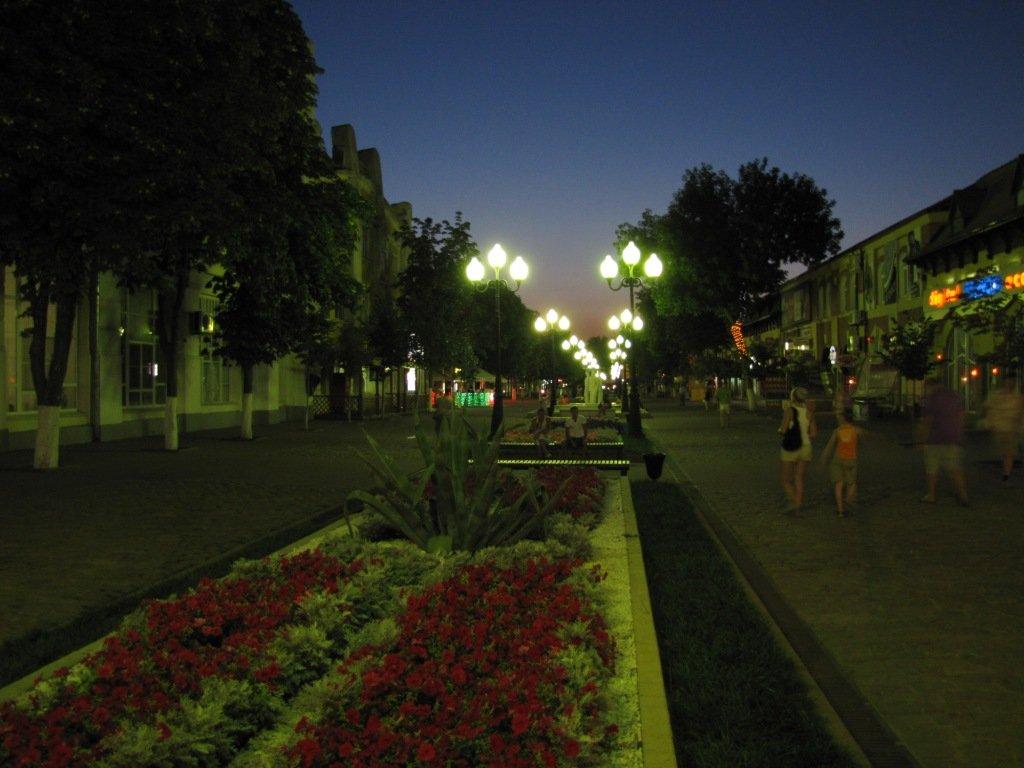 правда, фото улиц ночного ейска стать