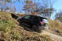 Подобные склоны не представляют для нового Forester никаких проблем. Все модели оснащены системой Hill Start Assist, а некоторые комплектации дополнительно оборудованы системой Hill Descent Control, замедляющей скорость движения автомобиля на спуске.