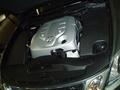 Из самостоятельных процедур в подкапотном пространстве нового Lexus GS300 водителю предлагается только доливать жидкость в бачок омывателя