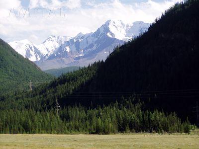 Вид Северо-Чуйского хребта (за Акташем)