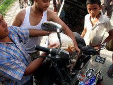 Бензиновая проблема в Непале стоит остро
