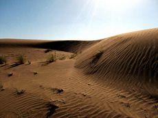 В тысячекилометровой и унылой до одурения пустыне Кара-Кум