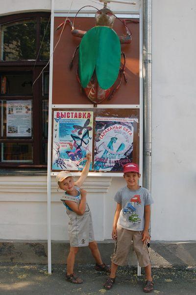 Путешествие из Новосибирска в Крым.