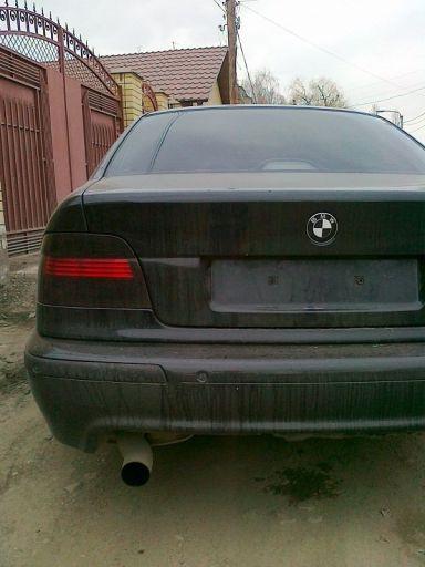 BMW 5-Series 2001 отзыв автора | Дата публикации 10.04.2012.