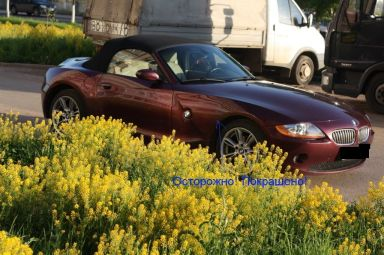 BMW Z4 2003 отзыв автора | Дата публикации 24.06.2011.