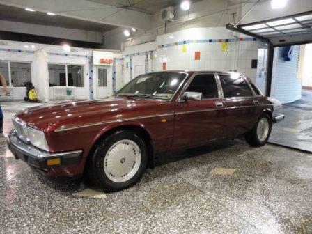 Jaguar Daimler 1993 - отзыв владельца