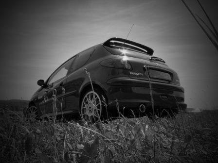 Peugeot 206 2006 - отзыв владельца