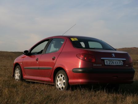 Peugeot 206 2008 - отзыв владельца