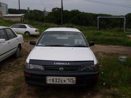 Toyota Corolla 2002 - отзыв владельца