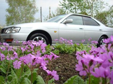 Toyota Crown 1997 отзыв автора | Дата публикации 02.03.2009.