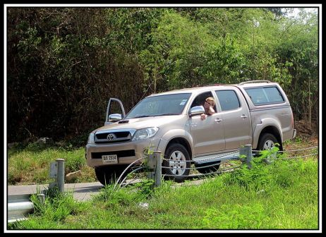 Toyota Hilux Pick Up 2010 - отзыв владельца