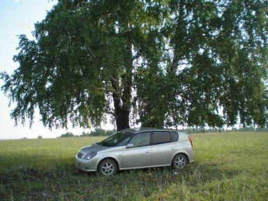 Toyota Opa, 2001