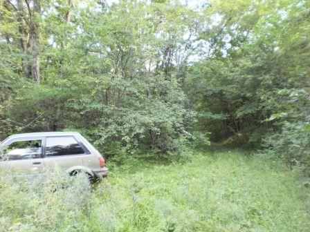 Toyota Starlet 1988 - отзыв владельца