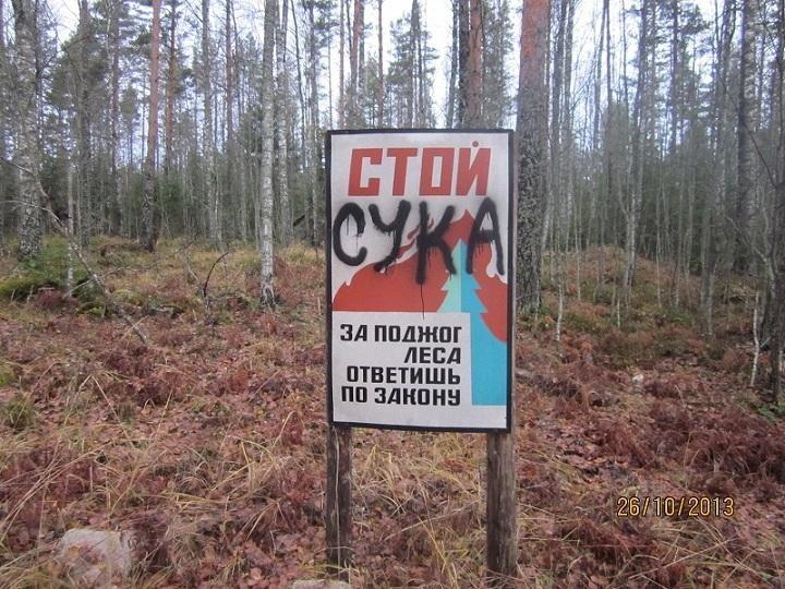 Точно подмечено)