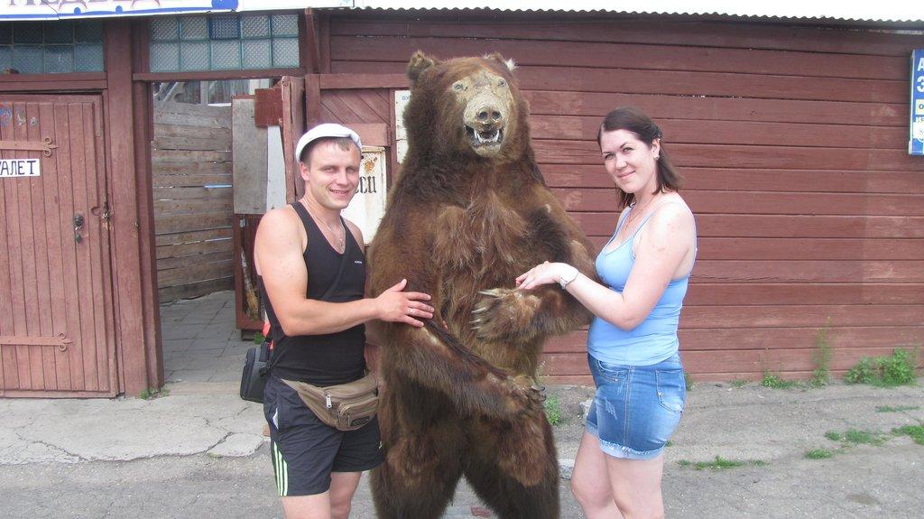 Чучело медведя в пос.Листвянка.Сзади здание в котором расположен вальер для медведей их там разрешают кормить с рук....