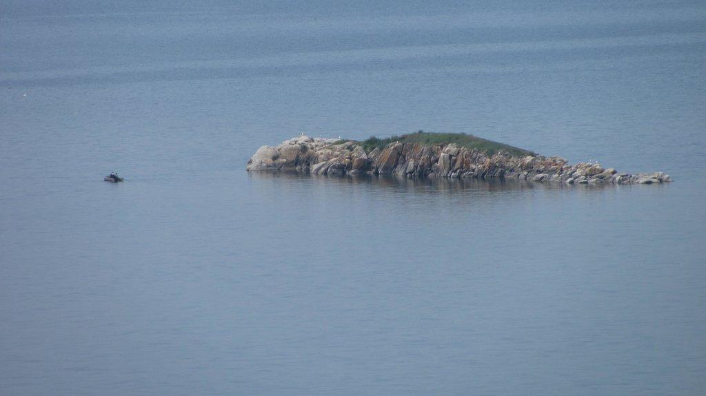 Вершина скалы...похожа на крокодила...