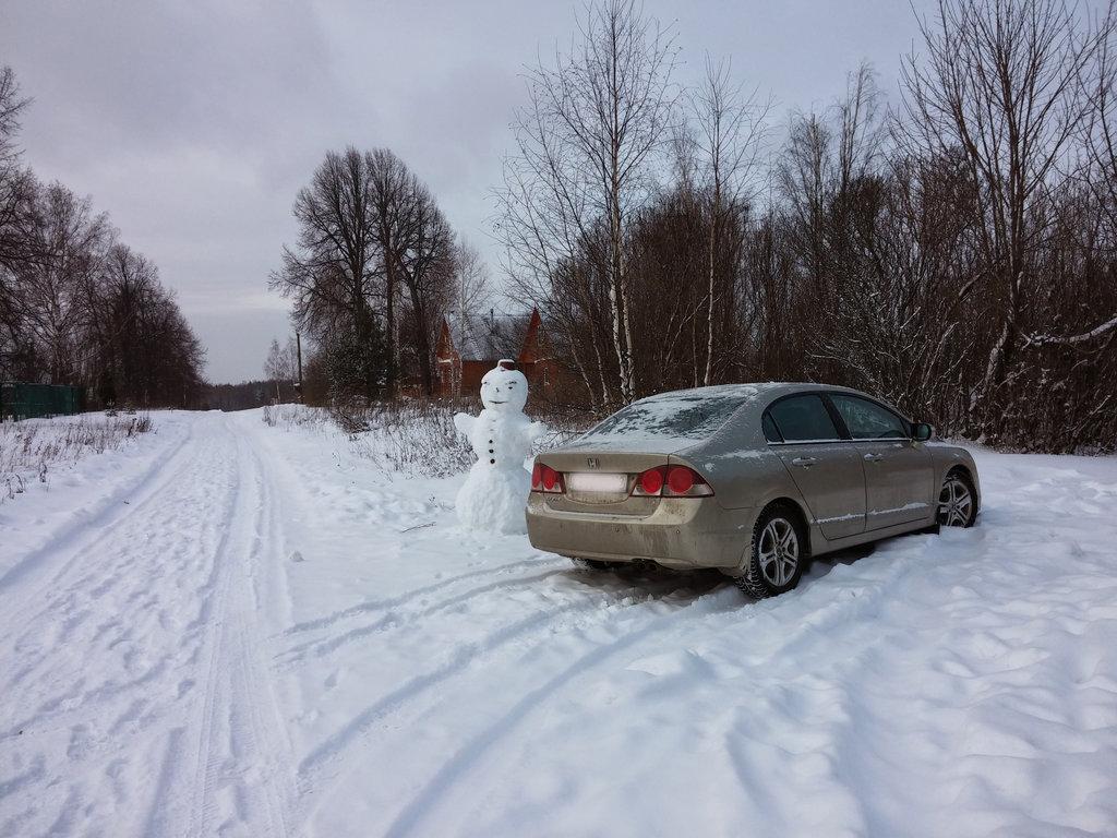 В деревне зимой, НГ 2014-2015