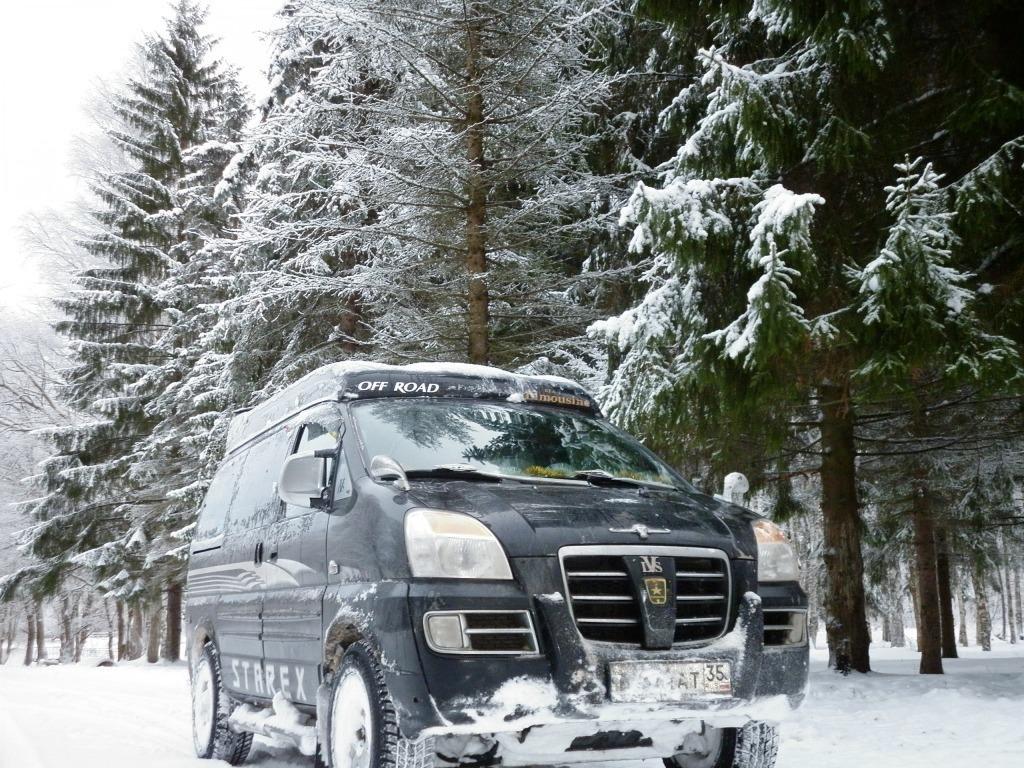 Зимний лес, охота!
