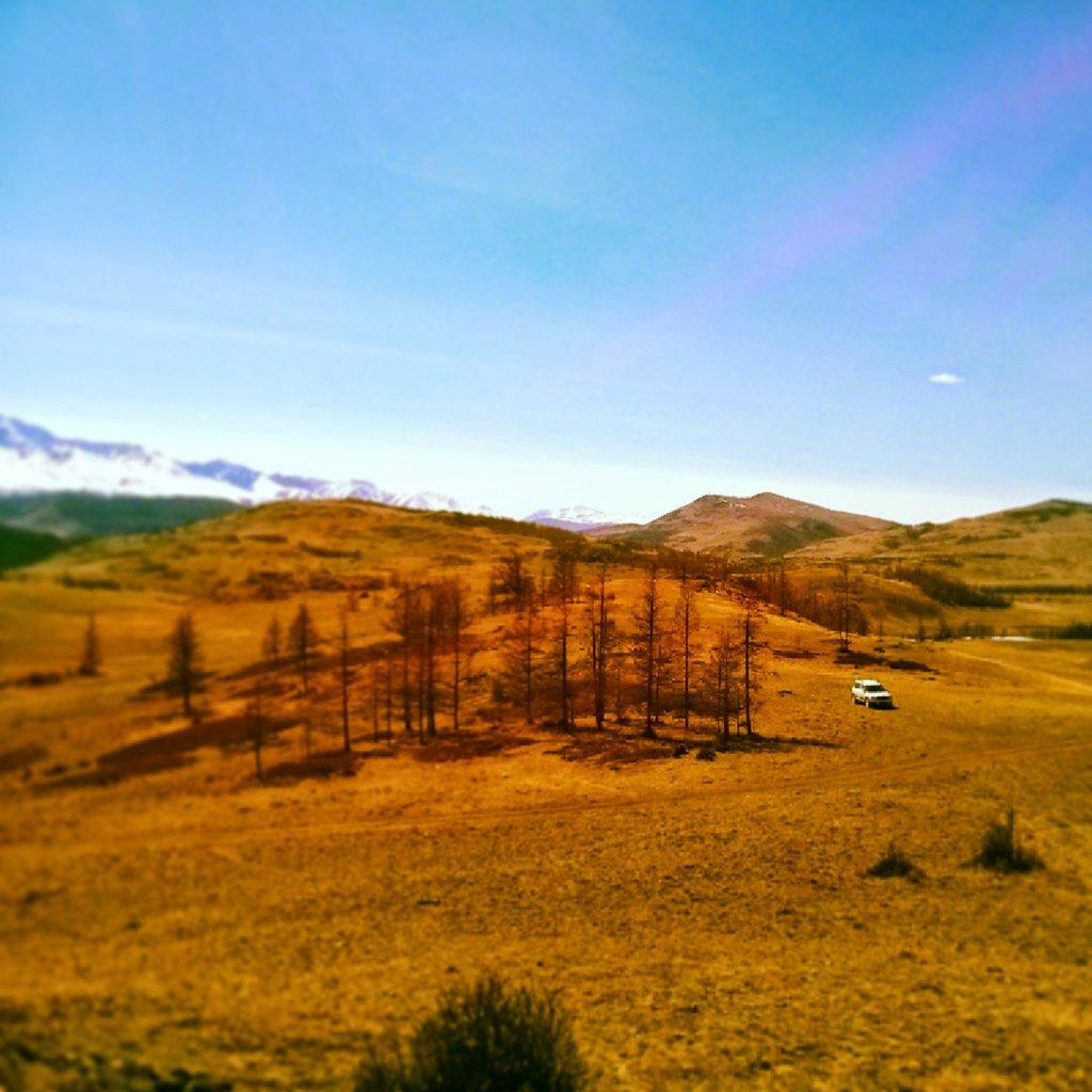 Ездить по полям - одно удовольствие. Это прям стихия этой машины :). Где-то по дороге на Актру, Алтай.