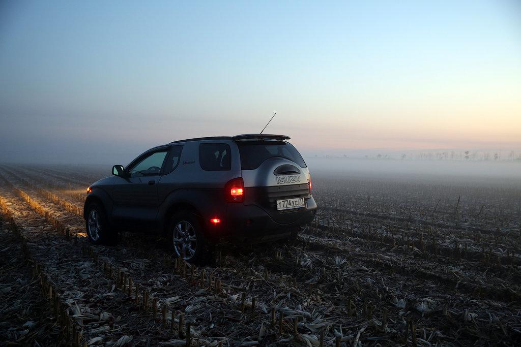 В поле, Ростовская область.