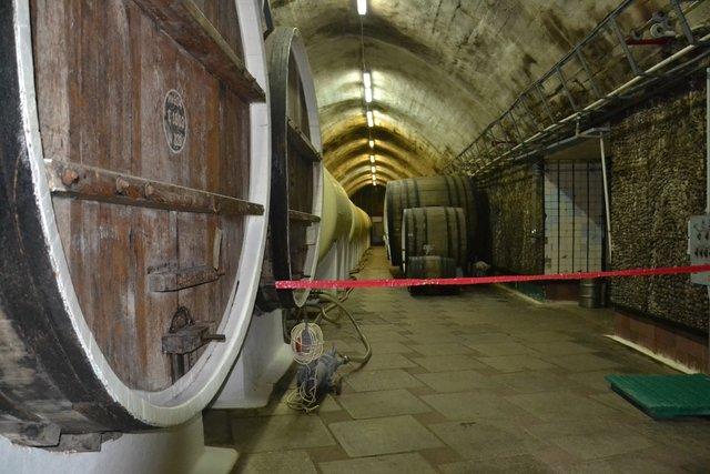 Принуждение в подвале фото 625-682