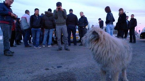 Встреча в Улан-Удэ