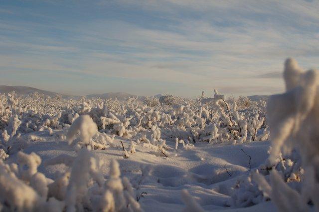 Утро в Якутии