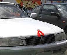 Главная цель акции протеста — привлечь внимание жителей Приморья и властей к предстоящему введению новых таможенных тарифов на ввоз в Россию японских подержанных иномарок.