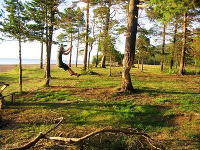 Развлекуха — катание на тарзанке. Страшно, дерево подрублено, вдруг упадет?