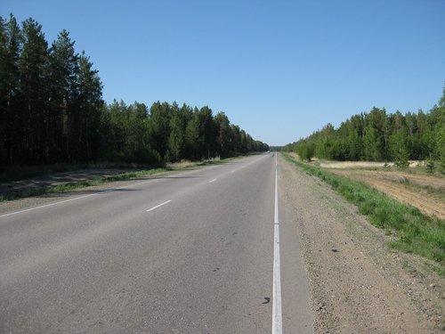Вдоль дорог появились леса.